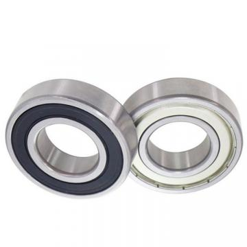 NSK Industry Machine Bearing Deep Groove Ball Bearing 6313 for Pumps/Fans