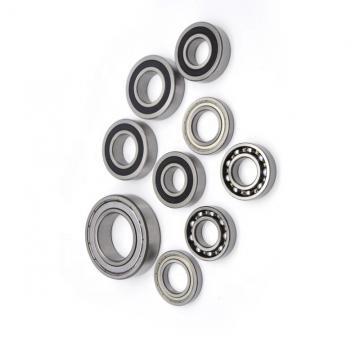 SKF Brass Cage Bearing 7020 7024 7038 7318becbm Angular Contac Ball Bearing