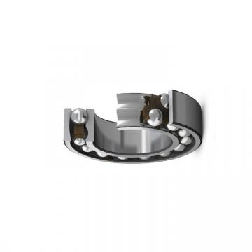 Fyh NACHI Asahi NTN NSK Pillow Block Bearings Housing Bearing