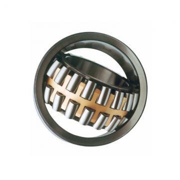 High Precision NSK, SKF, Koyo Deep Groove Ball Bearing 6204, 6204-2RS, 6204-DDU, 6204-2rsr, 6204-2rsh, 6204-2z