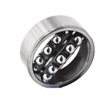 Deep Groove Ball Bearing 6204 2RS 6204zz Motorcycle Bearing, Gearbox Bearing for Automotive, Elctrial Motor, Fan NSK, SKF, NTN, Koyo